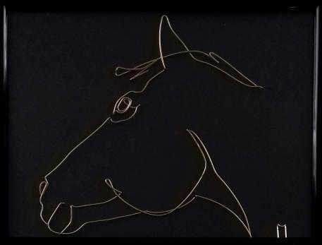 horses of race 20180606_153831-1