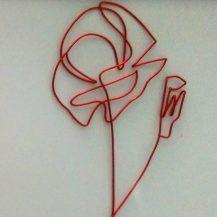 cropped-flower-poppy-img_20171012_104645.jpg