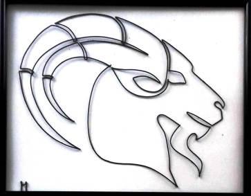 Capricorn 20180608_140502-1