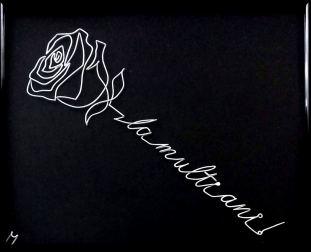 la multi aniși-un trandafir 20180608_144531-1