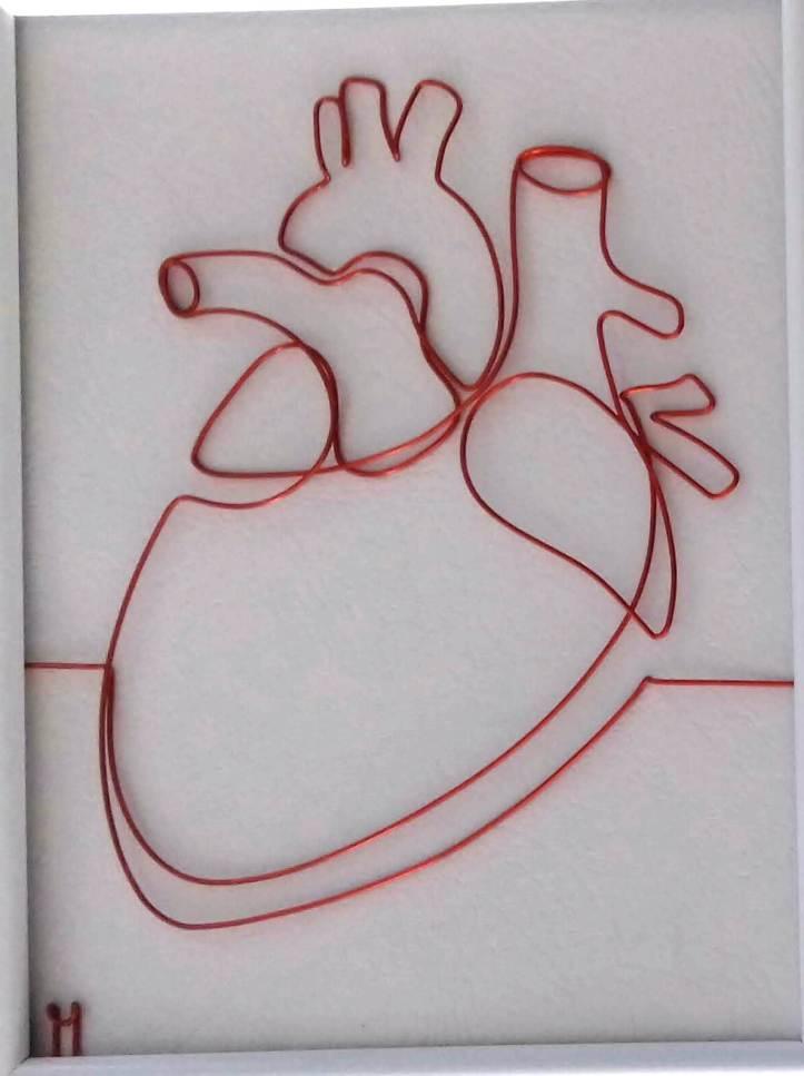 Inimă umană 20180920_122424-1