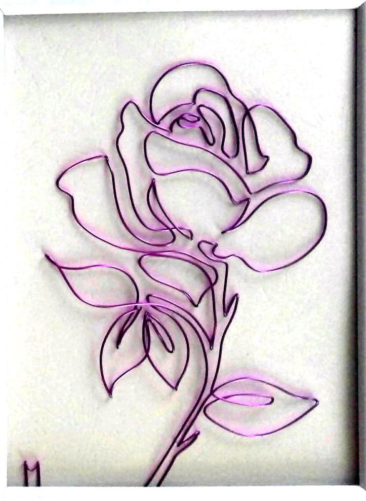 lila rose 20180628_145359-1