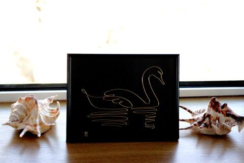 the swan lake IMG_6094