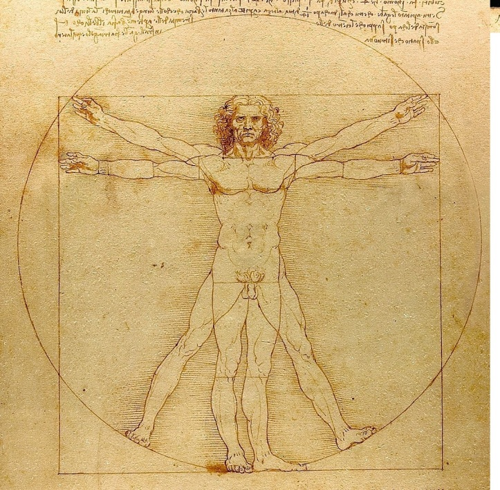 Vitruvian Man S 1200px-Da_Vinci_Vitruve_Luc_Viatour xxx