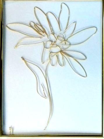 floare-de-colt-20200102_214627-1