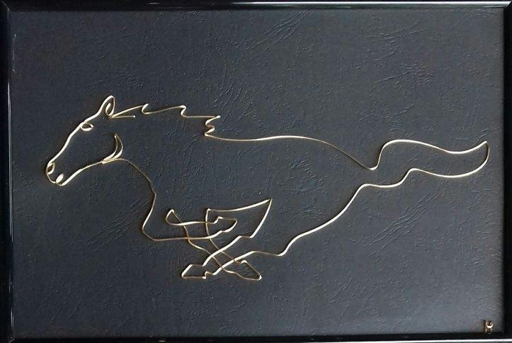 Mustang horse 20190713_102231-1