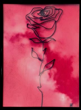 trandafir IMG_20210822_083236
