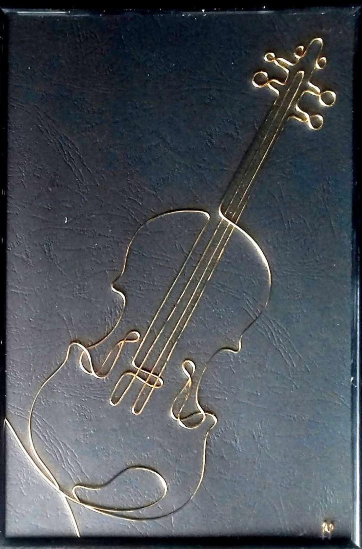 violin 20190729_114623-1