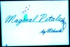 Magical Petals 20191118_074940-1