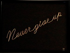 Never give up IMG_5830 x
