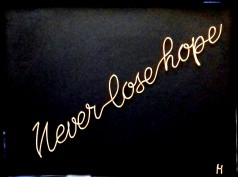 never lose hope 20190820_133119-1