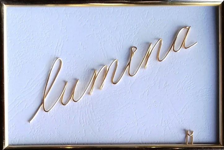 lumina 20191106_095845-1