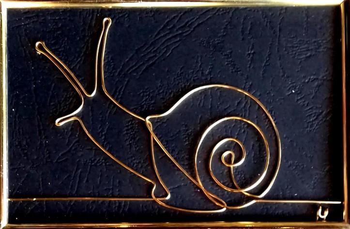 snail 20191020_135206-1