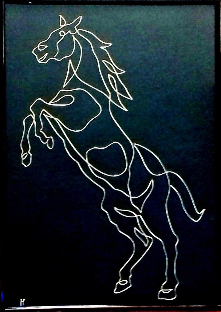 Big Horse 20200111_090054-1