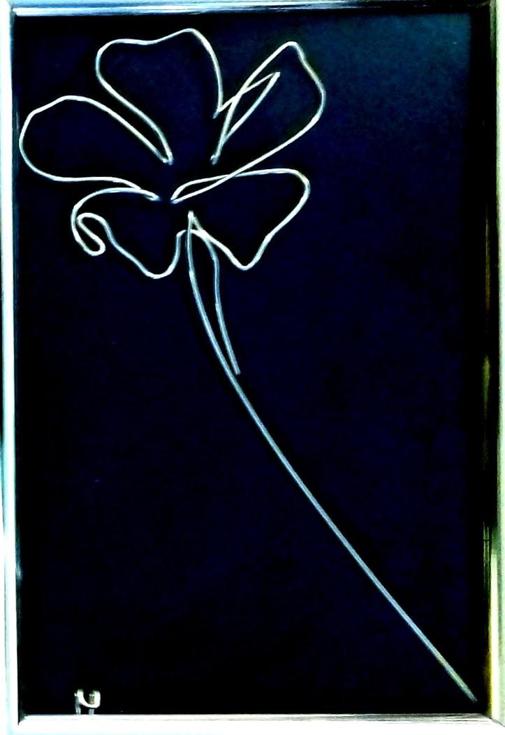 delicate flower @bymosler 20201107_082701-1
